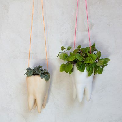 Molar ceramic hanging pot in the shape of a tooth.
